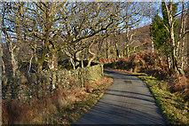 SH6044 : The road up Nanmor by Nigel Brown