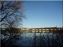 NT6578 : East Lothian Landscape : Seafield Pond by Richard West