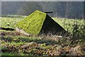 SO9809 : Moss covered roof by Philip Halling