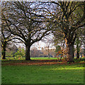 TL4656 : Coleridge Rec on a December afternoon by John Sutton