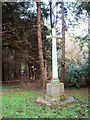 TG1801 : War memorial by Catbridge Lane/Intwood Lane junction by Evelyn Simak