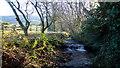 ST3995 : The Llwynau Brook by Jonathan Billinger
