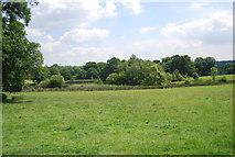 TQ5244 : The Lake, Penshurst Park by N Chadwick