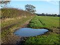 TF8521 : Farmland track near High House, Weasenham All Saints. by Richard Humphrey
