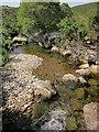 SX5384 : River Lyd by Derek Harper