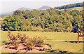 NT5034 : Eildon Hills from Kingsknowe Hotel, Galashiels 1988 by Ben Brooksbank