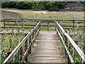 SS4525 : Viewing Platform on Torridge Marshland by Tony Atkin