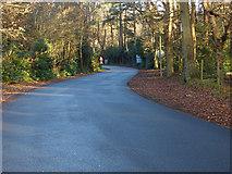 SU8265 : Road to Ravenswood Village by Alan Hunt