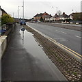 ST3090 : Large puddle around a blocked drain in Malpas, Newport by Jaggery
