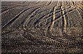 NO0300 : Bare earth by William Starkey