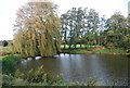 TG0507 : Lake, Runhall by N Chadwick