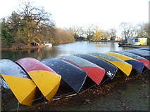 TQ3187 : Boats laid up for the winter in Finsbury Park by Marathon