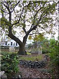 SX9263 : Grounds of the Haytor hotel, Meadfoot Road, Torquay by David Smith