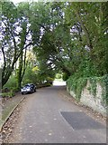 SX9363 : Lincombe Drive, Torquay by David Smith