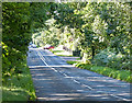 TF6524 : Lynn Road at Ling Common by Mat Fascione
