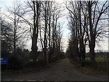 TQ0070 : The entrance to Procter and Gamble car park by David Howard