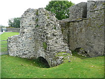 S4943 : Remains of the water mill in Kells Priory by Humphrey Bolton
