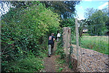 SE3357 : Walking out of the Nidd Gorge by N Chadwick