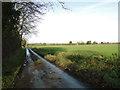 TG0111 : Shady Lane? No, Spring Lane, Yaxham by Adrian S Pye