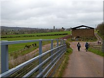 SX9796 : Footbridge over M5 west of Broadclyst by David Smith