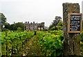 SO4465 : Vineyard, Croft Castle by nick macneill