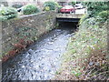 SE0619 : Black Brook - Beestonley Lane by Betty Longbottom
