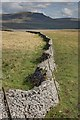 SD7873 : Dry Stone Wall, Combs Edge by Mick Garratt