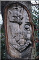 SK3891 : Tree sculptures on Newman Road, Wincobank by Ian S