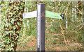 J3168 : Fingerpost towpath sign, Belfast - December 2014(1) by Albert Bridge