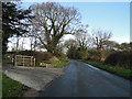 TG4901 : Entrance to Decoy Farm on Browston Lane by Adrian S Pye
