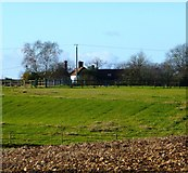 SU6514 : Looking across fields to Rushmere Farm buildings by Shazz
