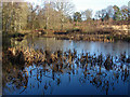 SU8359 : Stroud's Pond, Yateley Common by Alan Hunt