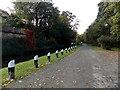 SJ2937 : Llangollen Canal mooring posts near Chirk Bank Bridge by Jaggery
