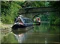 SJ9380 : Ryles Bridge east of Adlington, Cheshire by Roger  Kidd