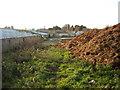 SU2474 : Derelict piggery, Stock Lane by Vieve Forward