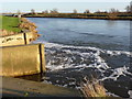 TL2799 : Pumped outfall into the River Nene by Alan Murray-Rust