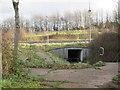 TA0122 : Footpath  subway  under  the  A15 by Martin Dawes
