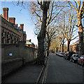 TL4457 : Sidgwick Avenue: winter sunlight by John Sutton