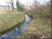 SJ8193 : Chorlton Brook by Mike Faherty