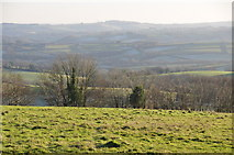 SS8928 : West Somerset : Countryside Scenery by Lewis Clarke
