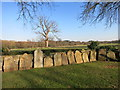 SU7856 : Corner of the Churchyard by Des Blenkinsopp