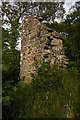 NY7960 : Ruins at Staward Peel by Christopher Hilton