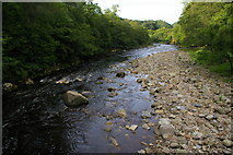 NY7962 : River Allen: view downstream from the footbridge at Plankey Mill by Christopher Hilton