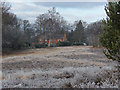 SU9555 : Pirbright Common by Alan Hunt