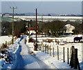 SK5756 : Providence Farm, Blidworth, Notts. by David Hallam-Jones
