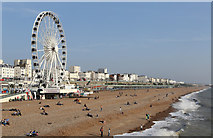 TQ3103 : Brighton Wheel and Beach by Martin Addison