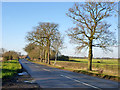 TL6928 : Road to Great Bardfield by Robin Webster