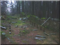 SD3493 : Remains of 'Church in the Woods', a sculpture at Grizedale Forest by Karl and Ali