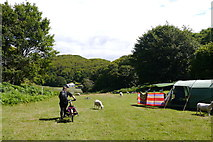SH6515 : The estuary camping field at Graig Wen by Phil Champion