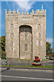 R4560 : Bunratty Castle by Ian Capper